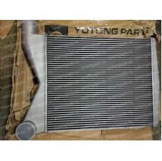 1119-00128 Интеркулер Yutong (Ютонг)