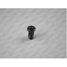 3001-00399 Болт масленки шкворня Yutong (Ютонг)